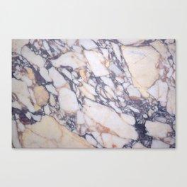 V&A museum pillars marble Canvas Print