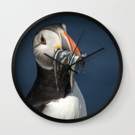 Puffin on the rocks with a beakful of fish. Wall Clock