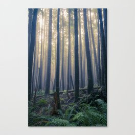 Tillamook Head Canvas Print