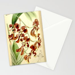 Cyrtochilum serratum Stationery Cards