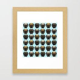 Mastiff Trio Framed Art Print