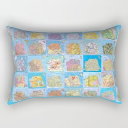 SF 49 Rectangular Pillow
