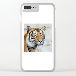 Tiger20151201 Clear iPhone Case