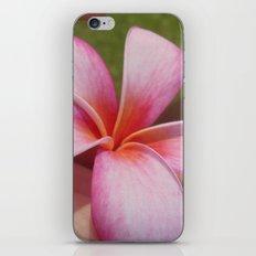 Plumarias in Hawaii iPhone & iPod Skin
