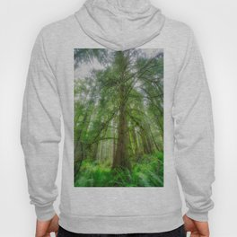 Ethereal Tree Hoody