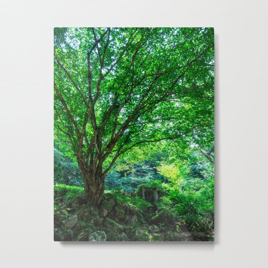 The Greenest Tree Metal Print