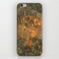 Natural Mosaic 5 iPhone & iPod Skin
