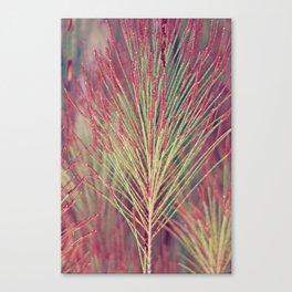 Leaves in Botanical Garden Canvas Print