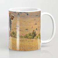 zebra Mugs featuring Zebra by minx267