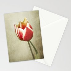 Delicate Inferno Stationery Cards