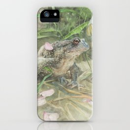 Toad with Cherry Blossom Petals iPhone Case