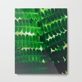 Electric Green Fern Metal Print