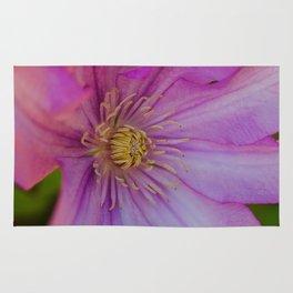 Clamatis Flower Rug