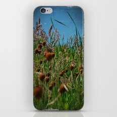 Lying in the Grass iPhone & iPod Skin