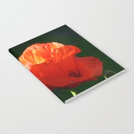 Two Oriental Poppies Notebook