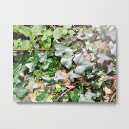 On The Forest Floor Metal Print