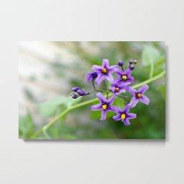 """Purple Beauty"" Metal Print"