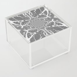 Abstract Branches Acrylic Box