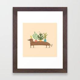 Dachshund & Parrot Framed Art Print