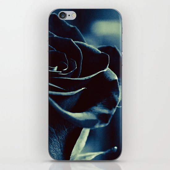 Black Rose iPhone & iPod Skin