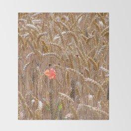 Poppy in a wheatfield Throw Blanket