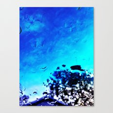 Morning After the Rain Canvas Print