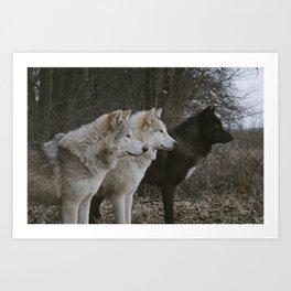 Wolfpack Art Prints | Society6