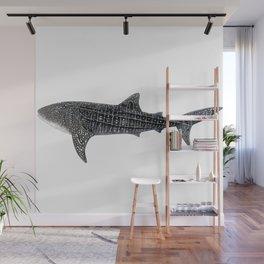 Whale shark Rhincodon typus Wall Mural
