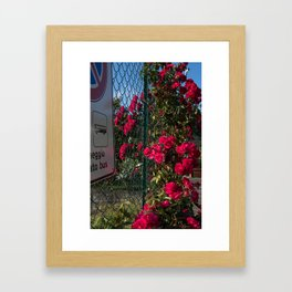 Blocked Beauty Framed Art Print