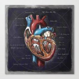 Fruit of Life series - heart, by Chok Bun Lam Canvas Print