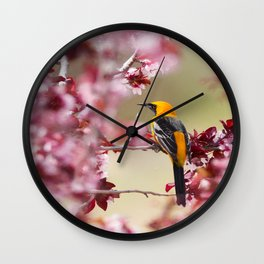 Oriole in Plum Tree Wall Clock