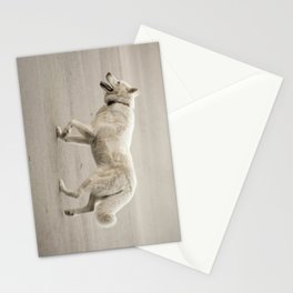 Whitey Stationery Cards