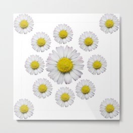 ALL WHITE SHASTA DAISY FLOWERS ART Metal Print