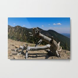 Log Sculpture Metal Print