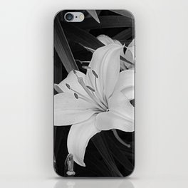 Contemporary Black White Lily Flower Floral Art A116 iPhone Skin