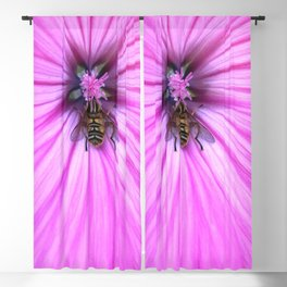 Nectar drunken flower fly Blackout Curtain