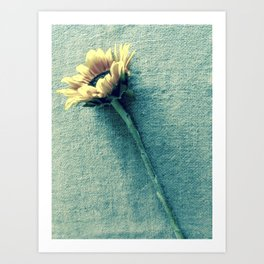 Sunflower on Denim Blue Art Print