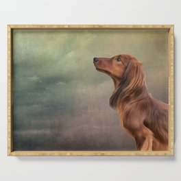 Dog breed long haired dachshund portrait oil painting Serving Tray