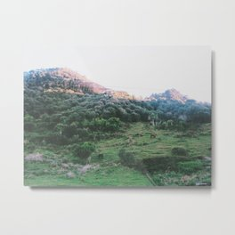 New Zealand Green Hills Metal Print