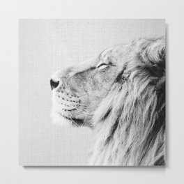 Lion Portrait - Black & White Metal Print