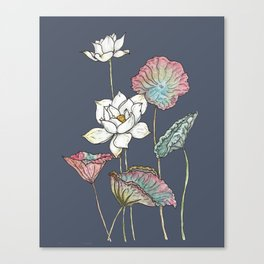 Lotus Symphony Canvas Print