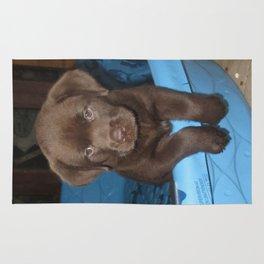 Labrador puppy Rug
