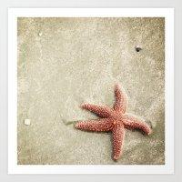starfish Art Prints featuring Starfish by Kaelyn Ryan Photography