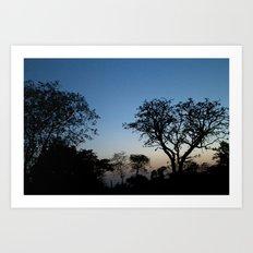 African Trees Art Print