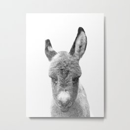 Black and White Baby Donkey Metal Print