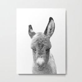 Black and White Baby Donkey Metal Print