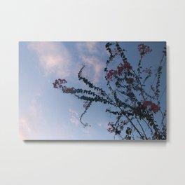 Skyline Euphoria Metal Print