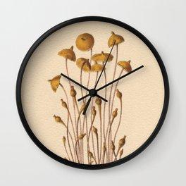 1800s Moss Lithograph Splachnum Luteum Wall Clock