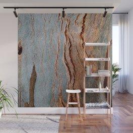 Eucalyptus Tree Bark and Wood Texture 18 Wall Mural