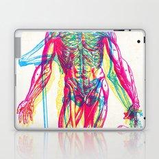 Andreae Vesalii RGB 2 Laptop & iPad Skin